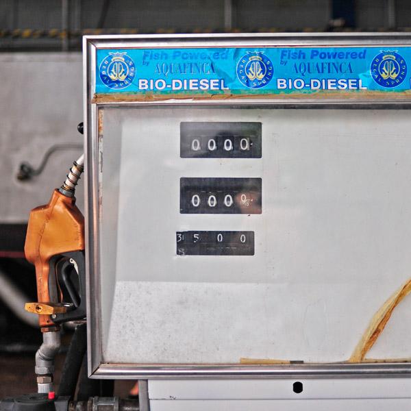 RegalSprings_BioDieselPump