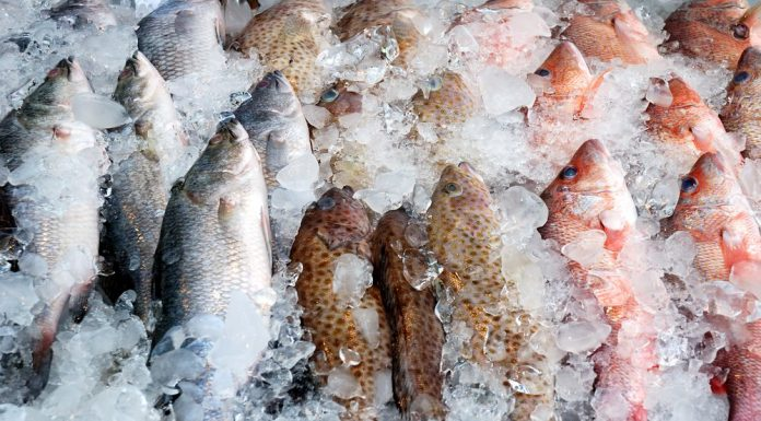 10 ways to cook perfect tilapia the healthy fish for Best way to freeze fish