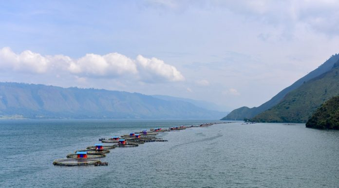A Regal Springs fish farm in Indonesia