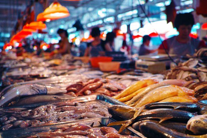 fish seafood market