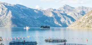 Sustainable aquaculture in lake nets