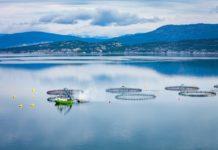 sustainable fish farm on lake