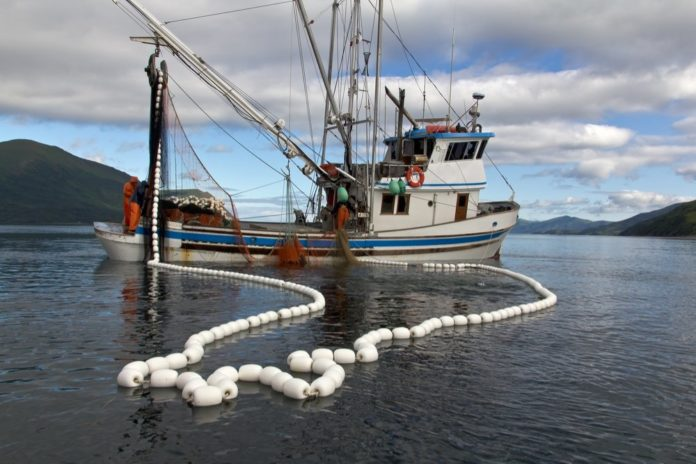 Sustainable Wild Fishery